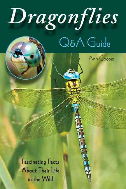 Dragonflies By Cooper, Ann